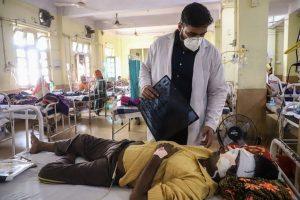 भारतमा 'कालो ढुसी'का कारण ४,३०० जनाको मृत्यु